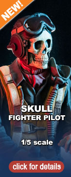Skull Fighter Pilot Typepadbutton